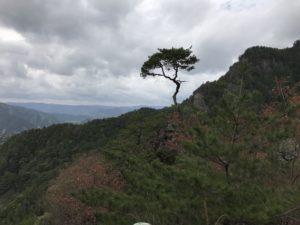 鳳来寺山の写真2